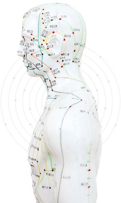 Akupunktur in Eisenach nach Energielinien
